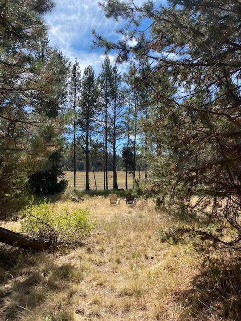 16912 Elsinore Road, Bend, OR 97707 (MLS #220132928) :: The Bifano Home Team