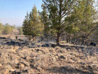 Lot 6200 Fishhole Creek Road, Bly, OR 97622 (MLS #220133314) :: Bend Relo at Fred Real Estate Group