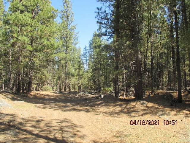 200 Deer Run  (Off Of) Road, Beatty, OR 97621 (MLS #220134011) :: Bend Relo at Fred Real Estate Group