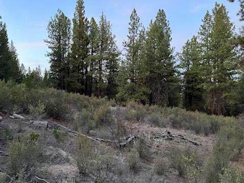 Lot 8 Waterview Way, Chiloquin, OR 97624 (MLS #220134205) :: Berkshire Hathaway HomeServices Northwest Real Estate