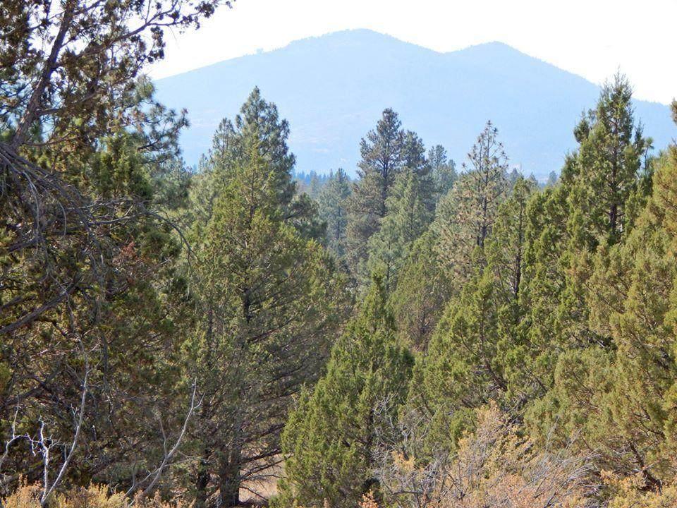 0 Klamath Forest Estates - Photo 1