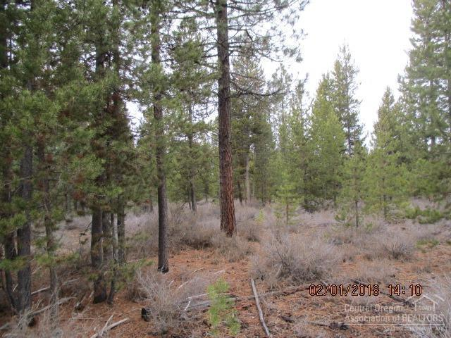10 Gracies Road Lot, Gilchrist, OR 97737 (MLS #201511269) :: Pam Mayo-Phillips & Brook Havens with Cascade Sotheby's International Realty