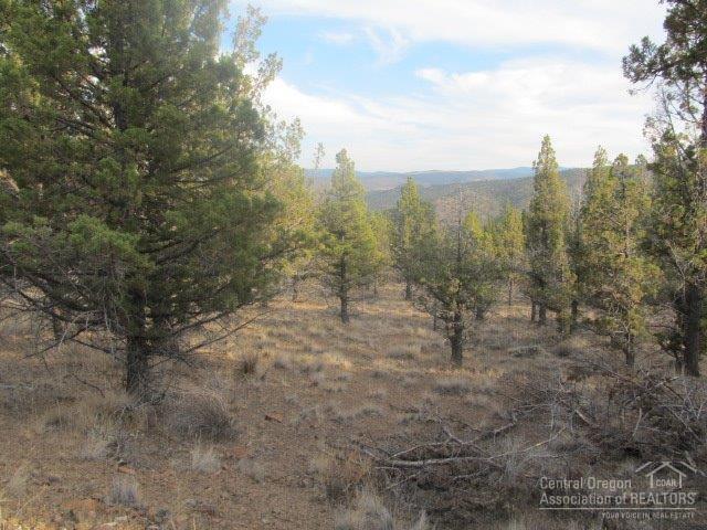 12857 SE Wickiup Road, Prineville, OR 97754 (MLS #201709113) :: Birtola Garmyn High Desert Realty