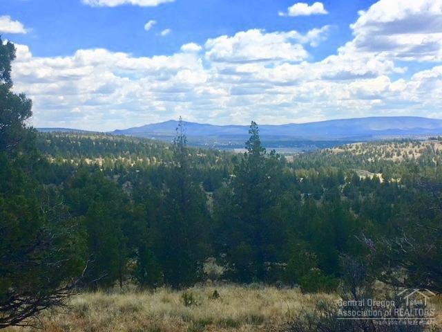 0 SE Odessa Road Tl1000, Prineville, OR 97754 (MLS #201805337) :: Berkshire Hathaway HomeServices Northwest Real Estate