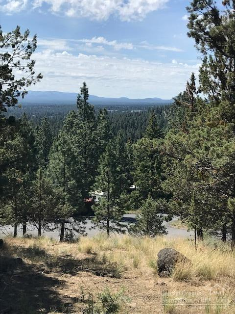 1716 NW Trenton Avenue, Bend, OR 97703 (MLS #201805434) :: Pam Mayo-Phillips & Brook Havens with Cascade Sotheby's International Realty