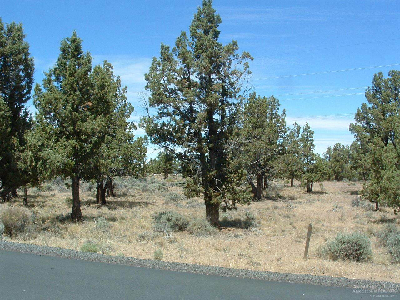 951 Trail Creek Drive - Photo 1