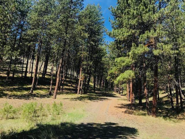 8680 NE Johnson Creek Road, Prineville, OR 97754 (MLS #202003390) :: Bend Homes Now