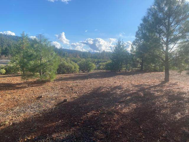 332 Cedar Ridge Drive, Cave Junction, OR 97523 (MLS #220112959) :: Premiere Property Group, LLC