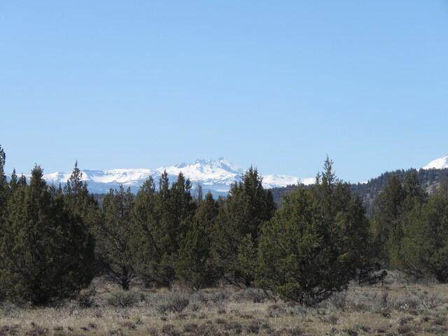 19660 NW Joe Buck Avenue, Terrebonne, OR 97760 (MLS #220113513) :: Central Oregon Home Pros