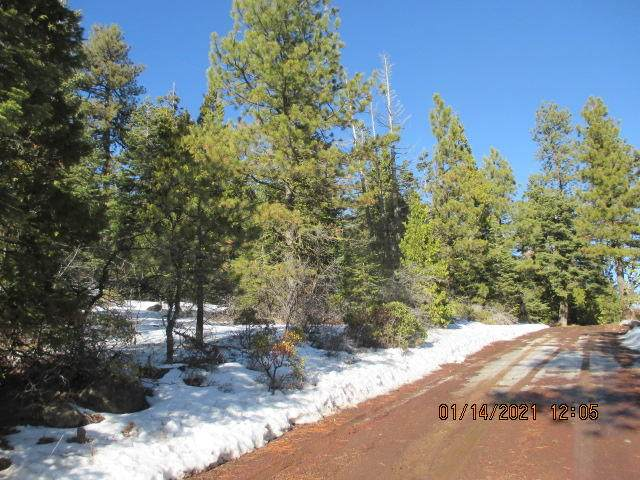 Lot 61 Sparrow Drive, Bonanza, OR 97623 (MLS #220114928) :: The Ladd Group