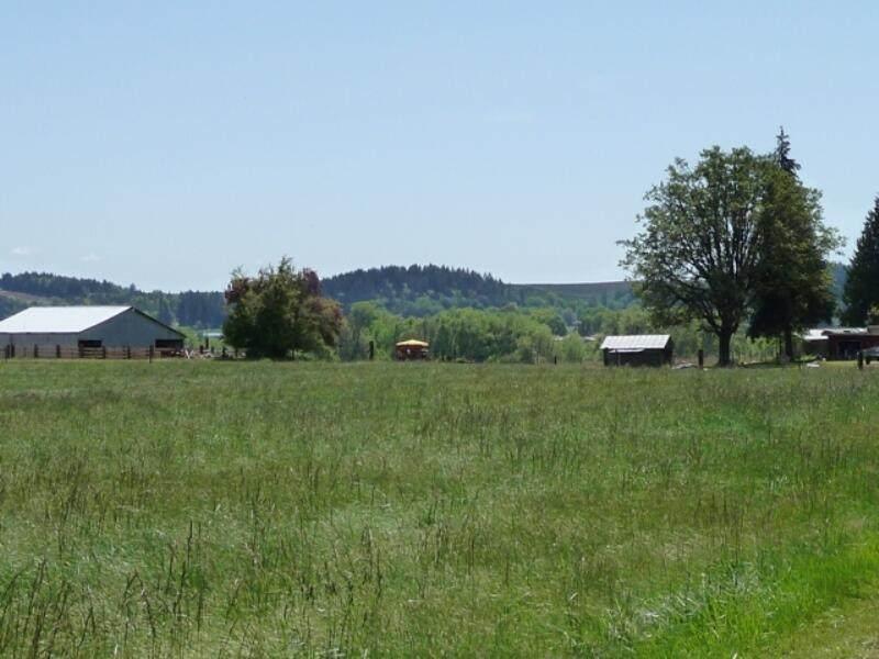 93551 Smyth Road - Photo 1