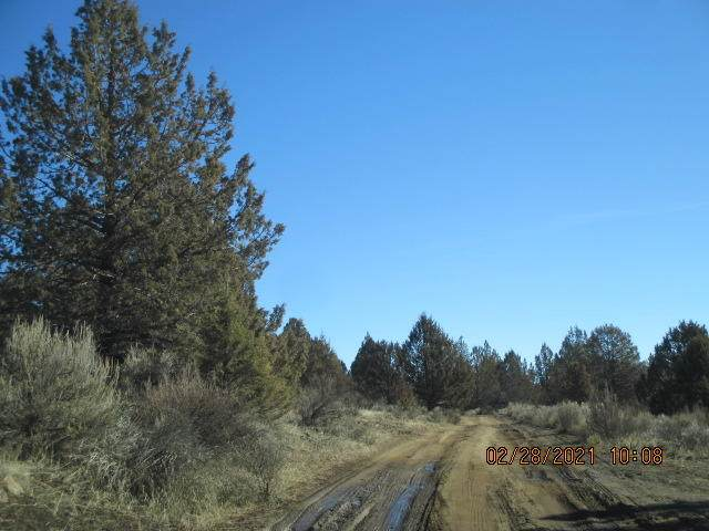 Lot 13 Godowa Springs (Off Of) Drive, Beatty, OR 97621 (MLS #220117115) :: Berkshire Hathaway HomeServices Northwest Real Estate