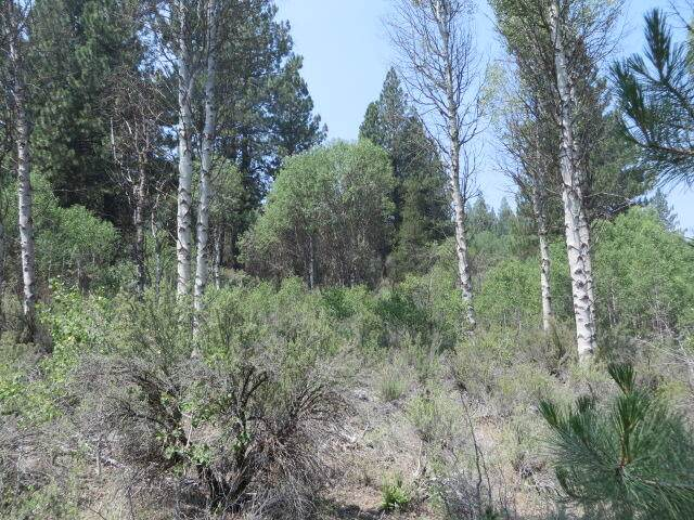 300 Brook Trout Lane, Chiloquin, OR 97624 (MLS #220118540) :: Coldwell Banker Bain