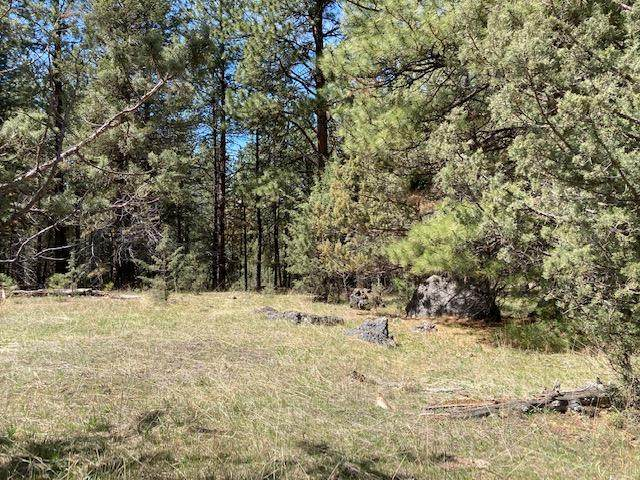 Nans Rock Road, Mount Vernon, OR 97865 (MLS #220121943) :: The Ladd Group