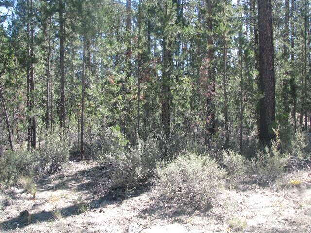 51360 Mitchell Road, La Pine, OR 97739 (MLS #220127904) :: Arends Realty Group