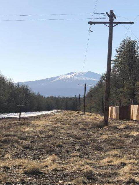 Lot 11 Munson Drive, Chiloquin, OR 97624 (MLS #220130050) :: Berkshire Hathaway HomeServices Northwest Real Estate