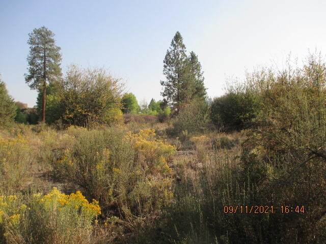 Lot 8 Forest View Drive, Chiloquin, OR 97624 (MLS #220131561) :: Oregon Farm & Home Brokers
