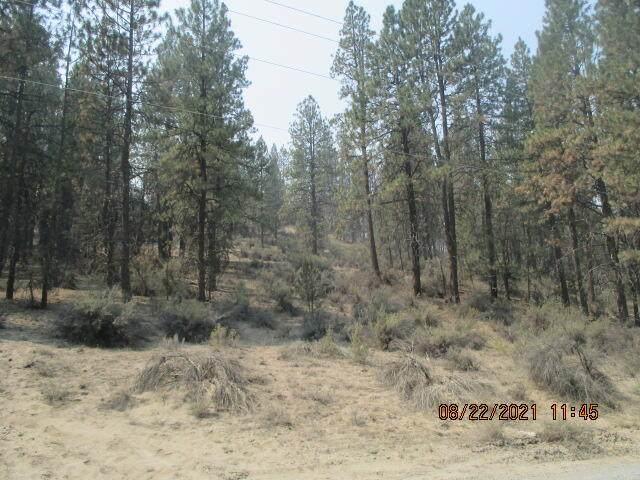 Lot 16 Pheasant Lane, Chiloquin, OR 97624 (MLS #220132083) :: Oregon Farm & Home Brokers