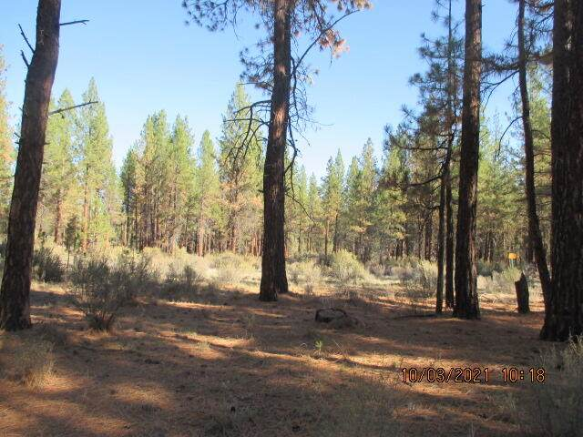 Lot 1200 Sprague River Rd (Off Of), Sprague River, OR 97639 (MLS #220132781) :: Bend Relo at Fred Real Estate Group