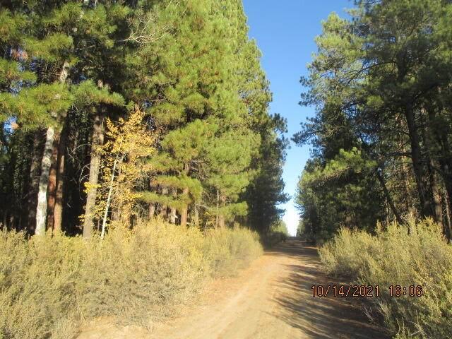 Lot 26 Green Forest Drive, Sprague River, OR 97639 (MLS #220133799) :: Team Birtola | High Desert Realty