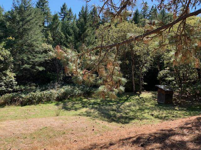 1979 Wagon Trail Drive, Jacksonville, OR 97530 (MLS #220133945) :: Vianet Realty
