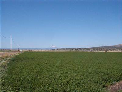 0-Lot 501 Galloway Lane, Metolius, OR 97741 (MLS #2908398) :: Fred Real Estate Group of Central Oregon
