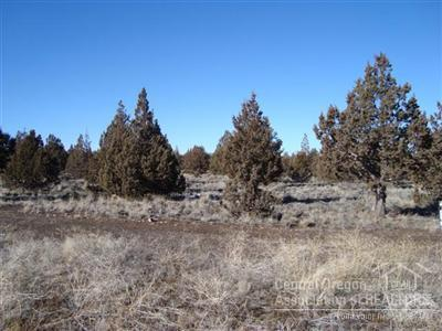 13150 SE Falcon Ridge Road, Prineville, OR 97754 (MLS #201709311) :: Team Birtola | High Desert Realty