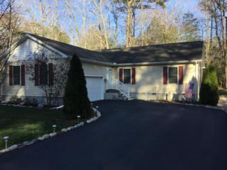 155 Sandyhook Rd, Ocean Pines, MD 21811 (#509274) :: The Speicher Group of Long & Foster Real Estate