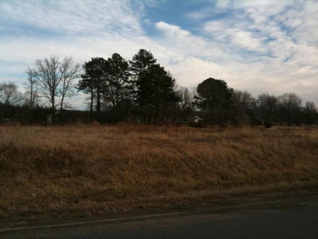 211 Moonglow, Fruitland, MD 21826 (MLS #470620) :: RE/MAX Coast and Country