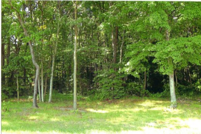 Lot 2 Eden Allen Rd, Eden, MD 21822 (MLS #473706) :: Condominium Realty, LTD