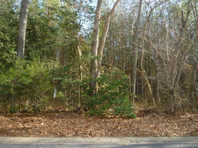 Lot 50 N Nithsdale Dr, Salisbury, MD 21801 (MLS #476043) :: Brandon Brittingham's Team