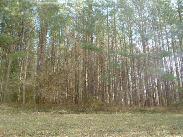 Lot 52 N Nithsdale Dr, Salisbury, MD 21801 (MLS #476077) :: Brandon Brittingham's Team