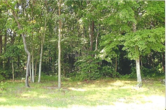 Lot 3 Eden Allen Rd, Eden, MD 21822 (MLS #503320) :: Condominium Realty, LTD