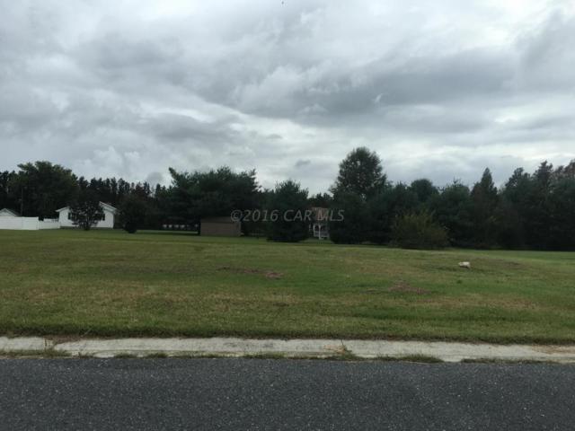 152 Porter Pkwy, Fruitland, MD 21826 (MLS #506642) :: The Rhonda Frick Team
