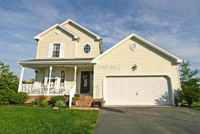 180 Nina Ln, Fruitland, MD 21826 (MLS #510670) :: Brandon Brittingham's Team