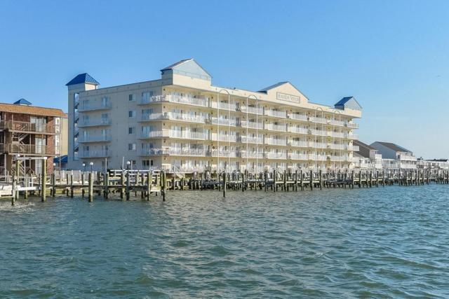 1005 Edgewater Ave #504, Ocean City, MD 21842 (MLS #511030) :: Atlantic Shores Realty