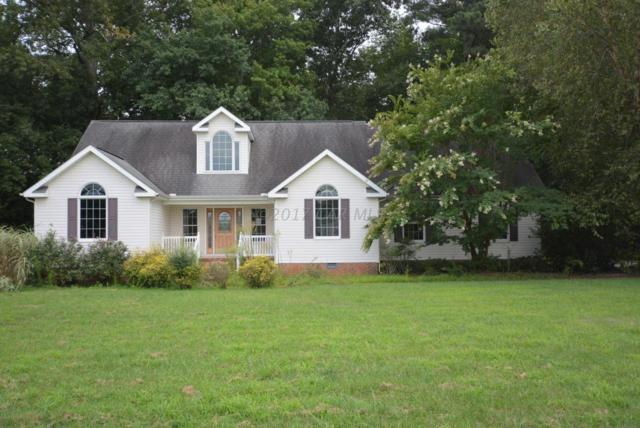 12005 Turtle Mill Rd, Bishopville, MD 21813 (MLS #512251) :: The Windrow Group