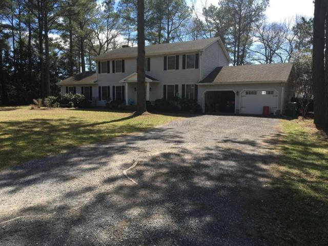 10648 Piney Island Dr, Bishopville, MD 21813 (MLS #513283) :: The Windrow Group