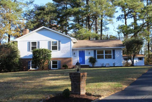5207 Sanborn Terrace, Salisbury, MD 21801 (MLS #513640) :: Condominium Realty, LTD