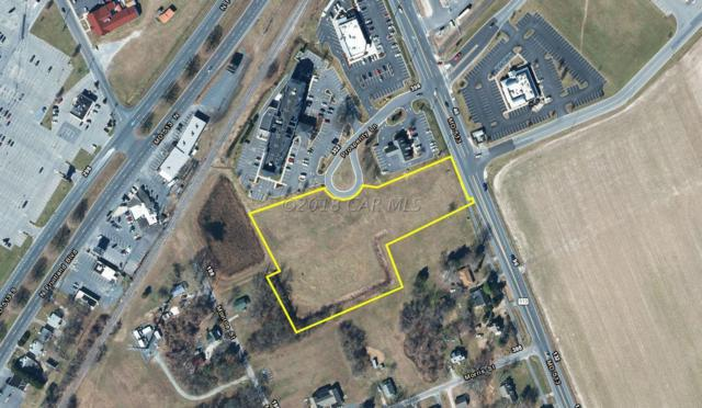300 Prosperity Ln, Fruitland, MD 21826 (MLS #514339) :: RE/MAX Coast and Country