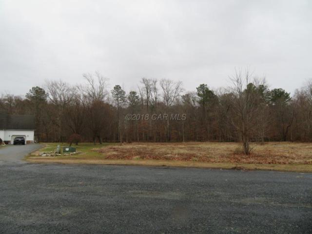 Lot 27 Briarwood Cir, Crisfield, MD 21817 (MLS #514830) :: Condominium Realty, LTD