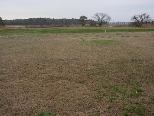12318 Southhampton Dr, Bishopville, MD 21813 (MLS #515050) :: The Windrow Group