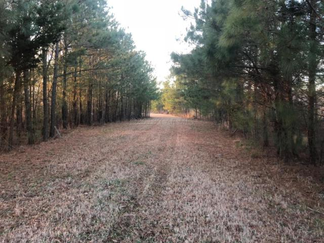 12738 Heathland Dr, Bishopville, MD 21813 (MLS #515092) :: RE/MAX Coast and Country