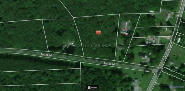 9409 Fooks Rd, Bishopville, MD 21813 (MLS #515631) :: RE/MAX Coast and Country