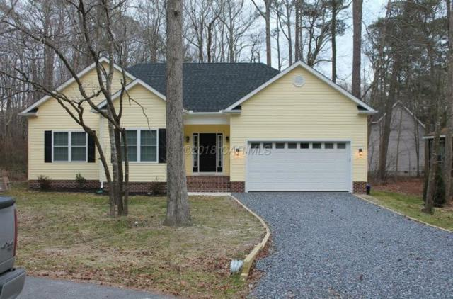 30002 Indian Cottage Rd, Princess Anne, MD 21853 (MLS #515661) :: Condominium Realty, LTD