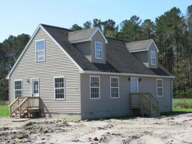 6011 Crisfield Hwy, Marion Station, MD 21838 (MLS #516011) :: RE/MAX Coast and Country