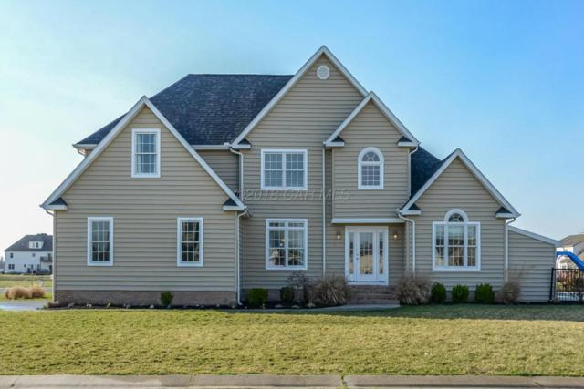 179 Nina Ln, Fruitland, MD 21826 (MLS #516032) :: Condominium Realty, LTD
