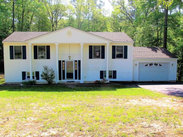 6125 Rockawalkin Rd, Salisbury, MD 21801 (MLS #516669) :: Condominium Realty, LTD