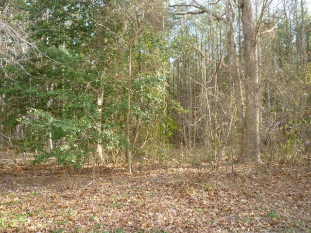 Lot 49 N Nithsdale Dr, Salisbury, MD 21801 (MLS #476039) :: Brandon Brittingham's Team