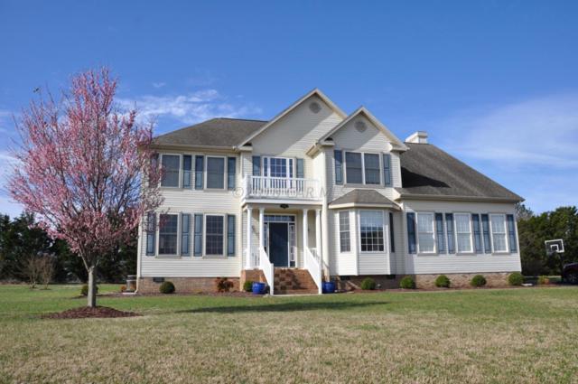 2009 Orchard Dr, Pocomoke City, MD 21851 (MLS #515128) :: Condominium Realty, LTD